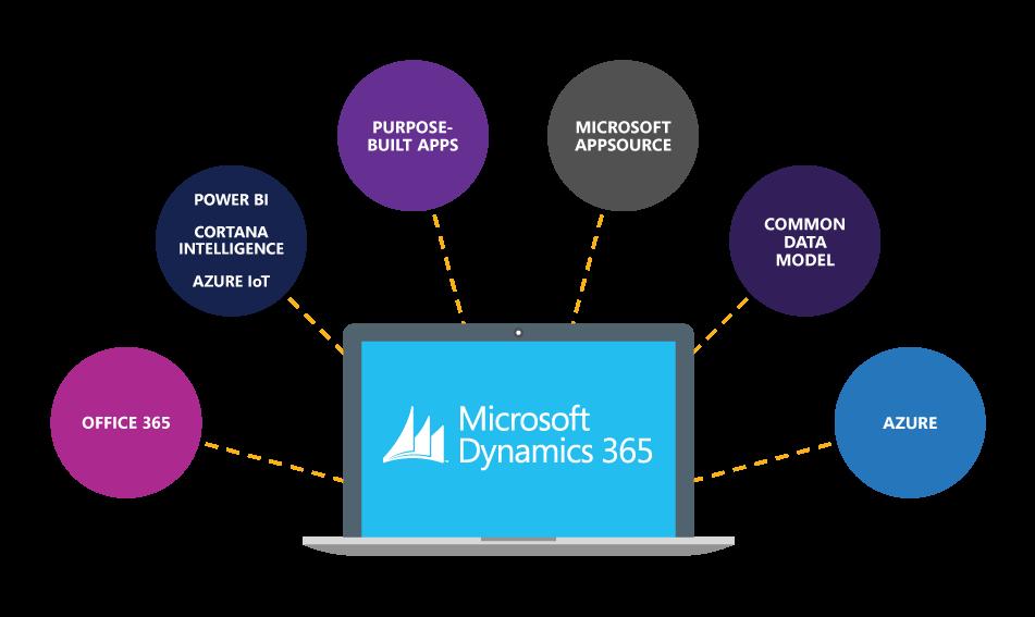 Microsoft Dynamics 365 Partner Blue Dynamic